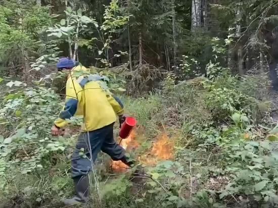 Пожарные отвели огонь от посёлка Кудама