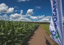О добровольных обязательствах по фиксированию цен на свою продукцию до 31 октября 2021 года заявили руководители ряда крупнейших российских агрохимических компаний