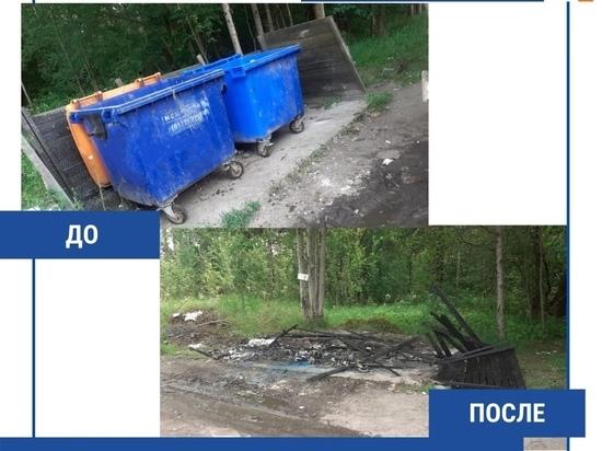 «Кровь вместе с желчью»: псковичей призвали не выбрасывать останки животных вместе с мусором