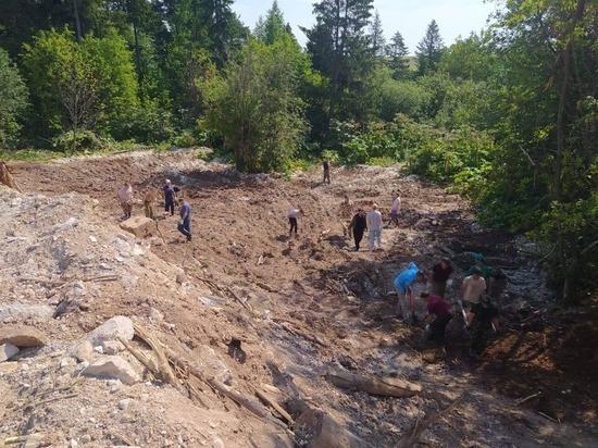 В Кирове лес очистили от свалки бетонных отходов