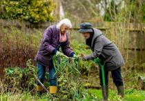 Кабмину поручено проработать вопрос о включении в бюджет на будущий год индексации пенсий для работающих пенсионеров