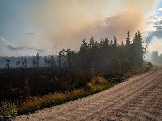 Заксобрание Карелии проведёт экстренное совещание, посвящённое лесным пожарам