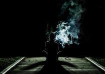 За хранение в кухне 19 грамм марихуаны осудят мужчину из Нового Уренгоя