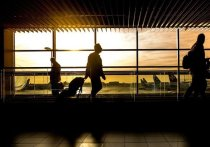 Россия с 9 августа возобновит авиасообщение с тремя странами