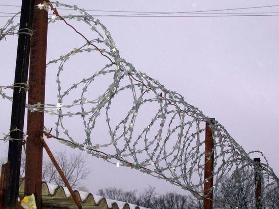 Эстония решила дать Литве колючую проволоку для белорусской границы