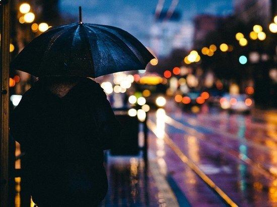 Сильные дожди ожидаются в ряде регионов России в ближайшие дни