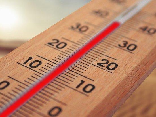 В Алтайский край придет аномальное похолодание