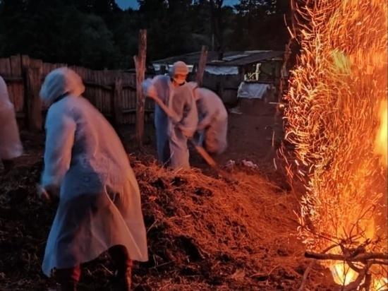 В Горномарийском районе Марий Эл ликвидируют африканскую чуму свиней