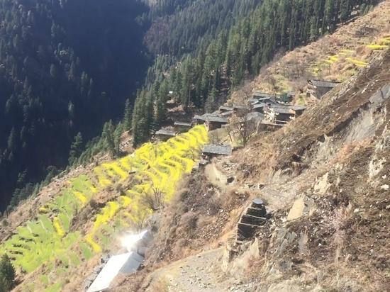 Девять туристов погибли в Индии при обвале на горной дороге