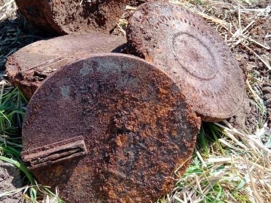 Участники поисковой экспедиции «Битва за Кавказ» обнаружили на Кубани фрагменты военного истребителя Як-1