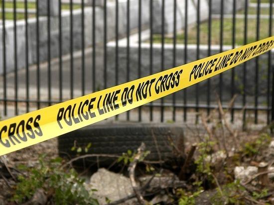 В США за неделю из-за инцидентов со стрельбой погибли более 400 человек
