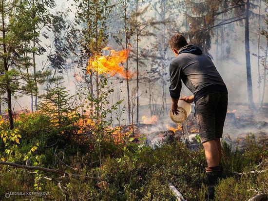 Карельские волонтеры организовали круглосуточное дежурство в районах, где бушуют пожары