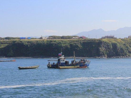 Посла РФ вызвали в МИД Японии из-за визита Мишустина на остров Итуруп