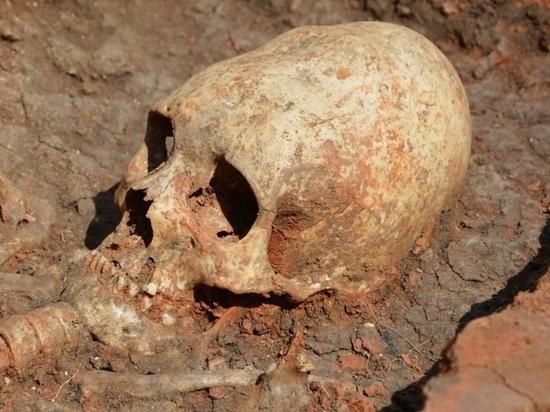 В Карелии на месте строительных работ нашли массовое захоронение