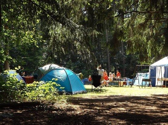 Массовое заражение ковидом случилось в детском лагере на Алтае
