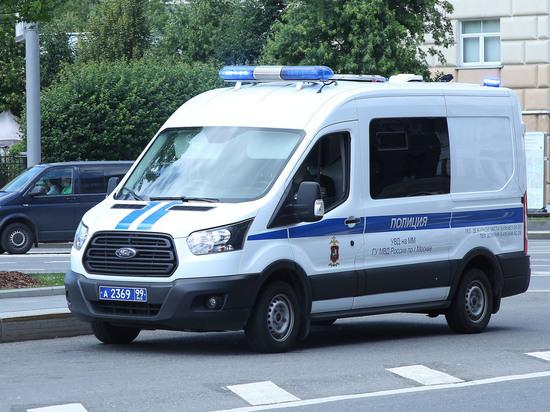 В Новой Москве трое неизвестных похитили из дома несовершеннолетнюю девочку, после чего надругались над ней в гараже