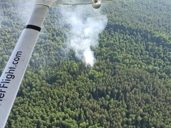 В лесах Марий Эл до 30 июля сохраняется высокая пожароопасность