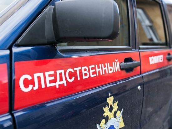 В Йошкар-Оле задержаны два подростка с крупной партией наркотиков