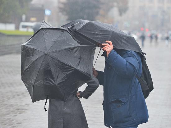 Из-за грозы и ветра в Томской области 27 июля объявлено штормовое предупреждение