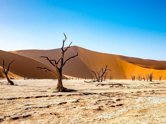 Россиянам открывают безвизовый въезд в Намибию с августа