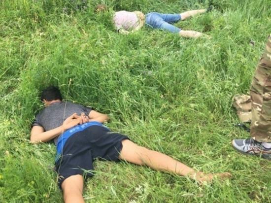 Коноплю уничтожили на 19 га в нескольких районах Забайкалья