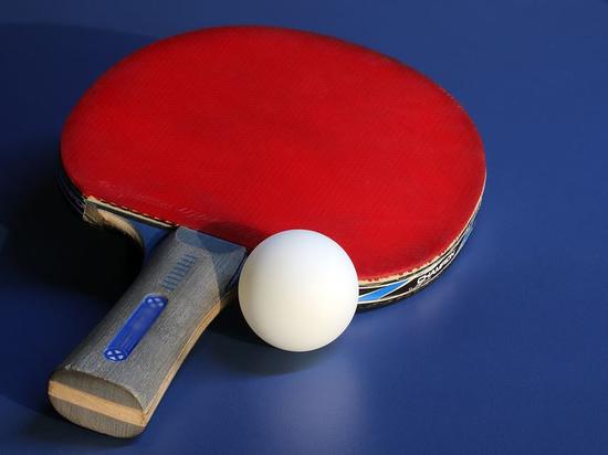 Порядка десяти дворов Благовещенска «обзаведутся» столами для тенниса