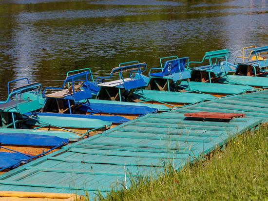 Август в Псковской области будет теплее нормы