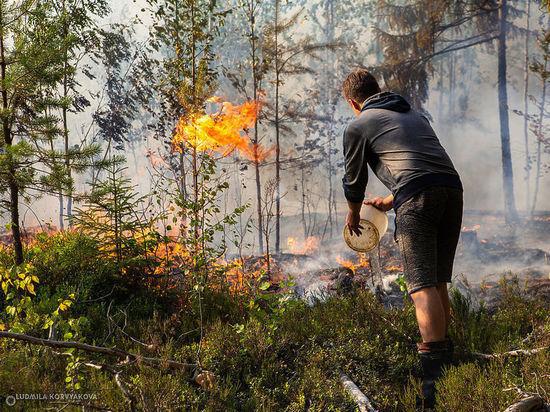 Эксперты уверены, что реальную площадь пожара в Найстенъярви власти занизили