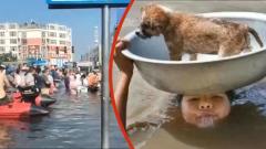 Китайцы спасаются от потопа: кадры трагических и курьезных моментов