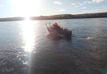 В Туве пропал всадник, переправлявший крупный рогатый скот через реку