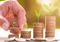 Аграриев Серпухова поддержат деньгами в рамках госпрограммы