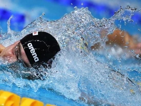 Шапша пожелал успеха калужскому пловцу на Олимпиаде