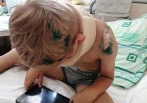 Мама пострадавшего ребенка переживает, что ее сына сделают виновным в аварии