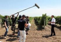В Тамани команда журналистов Дмитрия Киселёва снимает фильм