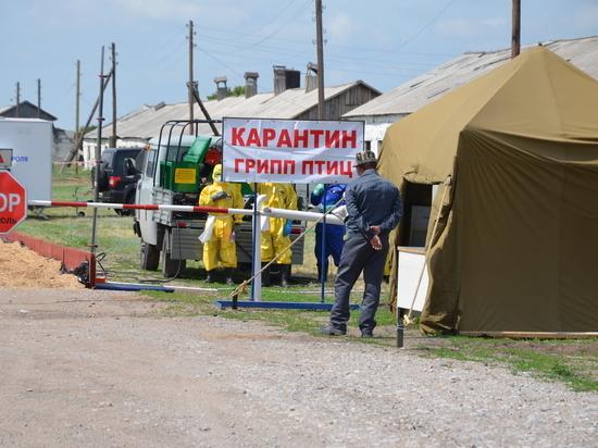 Сотрудники КГБУ «Управление ветеринарии по Завьяловскому району» рассказали о своей профессии