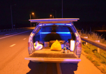 Наркоперевозчика задержали амурские полицейские возле Циолковского