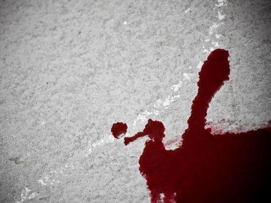 Петербуржца забили до смерти в парадной дома в Красносельском районе