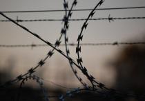 Рецидивист из Казахстана 1,5 года проведет в колонии за кражу электроинструмента из гаража в Новом Уренгое
