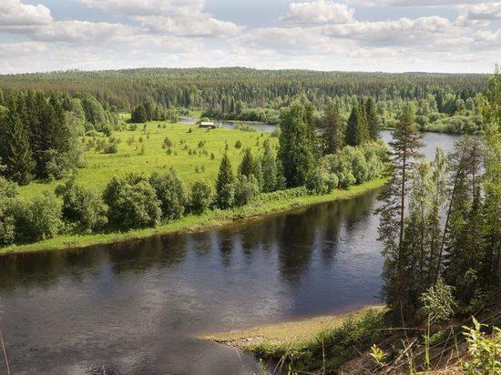 Проблема создания особо охраняемых природных территорий обсуждается властями Архангельской области и областными экспертами и лесопромышленниками.