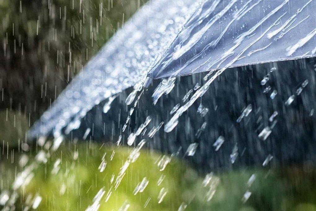 Как тут уютно — тепло и сыро… Синоптики обещают костромичам дожди без похолодания