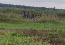 Литву атакуют мигранты