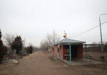 Волгоградец на кладбище избил палкой гражданскую жену