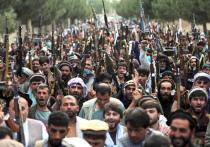 Боевики запрещенного и признанного террористическим в России «Талибана» говорят, что являются реальной военной и политической силой, которая контролирует почти весь Афганистан