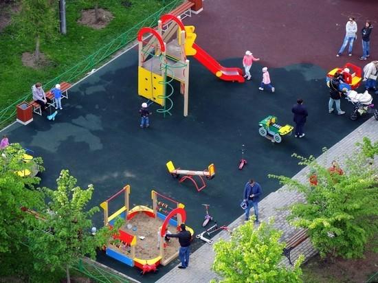 Не поделили газон: под Петербургом мамы подрались на детской площадке