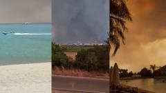 Дым от пожаров в Турции затмил солнце: видео катаклизмов