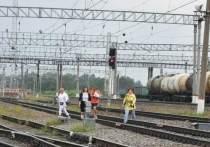 Более десяти нарушителей выявили на станции в Серпухове