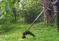 Досадная неосторожность стала причиной гибели 60-летнего мужчины, который косил газон возле своей дачи в Богородском округе Подмосковья