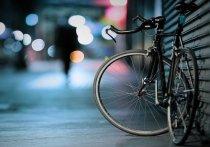 Электровелосипед стоимостью 80 тысяч рублей украл безработный великолучанин