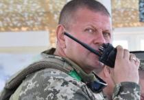 Вслед за Главным управлением разведки Минобороны Украины и Службой безопасности (СБУ) президент Зеленский принялся «перетряхивать» армейский генералитет