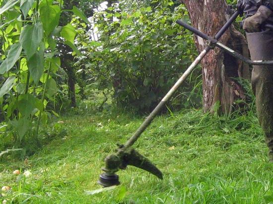 Дачника убило током во время стрижки газона